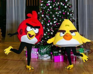 Праздник в стиле Angry Birds от cтудии Ольги Макаровой