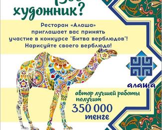 «Битва верблюдов» в ресторане «Алаша»