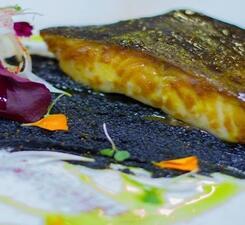 Черная треска с пюре из чечевицы с чернилами каракатицы и цикорием
