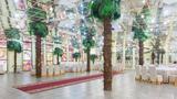 Pirate  Pirate — Тропический сад Алматы фото