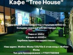 Cafe Bar Tree: футбольные трансляции на крыше!