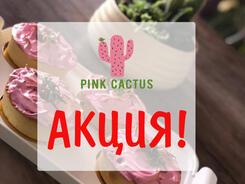 Акция в Pink Cactus
