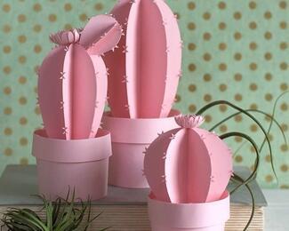 Торты размером S, M, L от Pink Cactus
