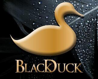 Съёмки передачи «Тан шолпан» телеканала Казахстан в Black Duck & Cooking Studio